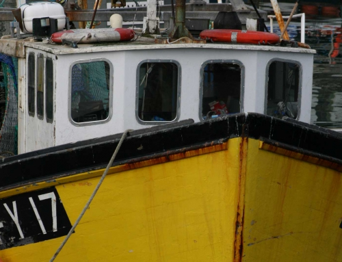 Deal on 2016 fish quotas a mixed bag for Cornish fleet
